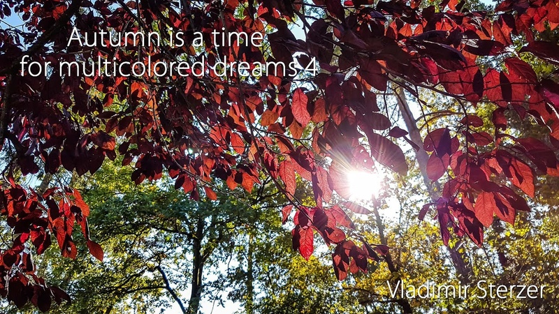Autumn is a time for multicolored dreams 4 ✵ Beautiful piano music ✵ Instrumental music