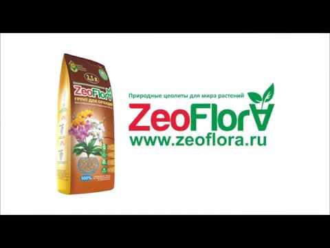 Грунт для орхидей «Цеофлора» 2,5 литра