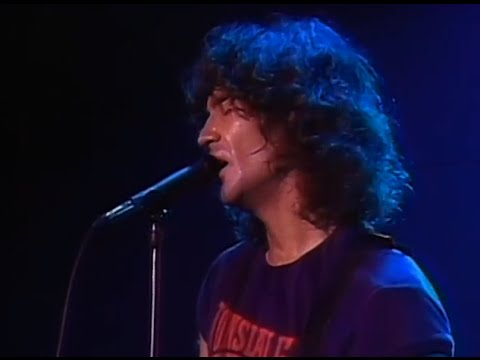 Billy Squier My Kinda Lover 11 20 1981 Santa Monica Civic Auditorium Official