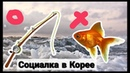 Помощь от государства в Корее Удочка или рыба