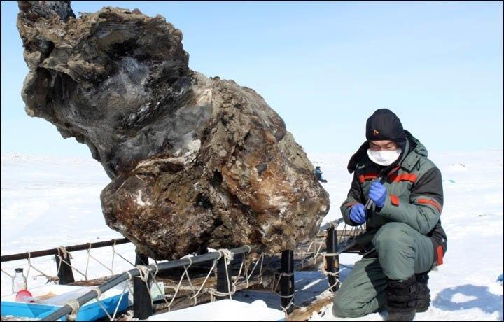 Что скрывают льды: 12 страшных находок, обнаруженных в ледниках, изображение №10