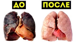 Вот Что Происходит с Телом Когда Бросаешь Курить (Впечатляет)