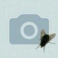 Фотография профиля Васи Васи ВКонтакте