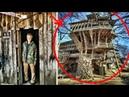 Мужик за 20-лет построил дом на дереве на 80-комнат и 10-этажей Там есть даже спортивная площадка