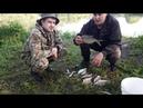 Отличная рыбалка! Просидели от заката до рассвета на реке и смотрите что из этого вышло!