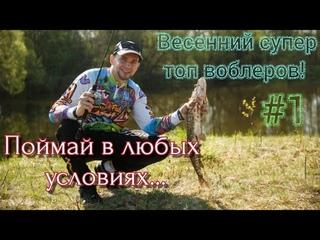 ВЕСЕННИЙ СУПЕР ТОП ВОБЛЕРОВ | SPRO FISHING | KOSADAKA HOST