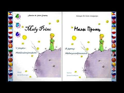 The Little Prince 4 6│Maly Princ │Малы Принц InterSlavic Language │ Medžuslovjansky jezyk